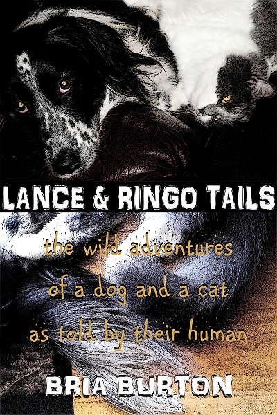 Lance & Ringo Tails qtr front cover
